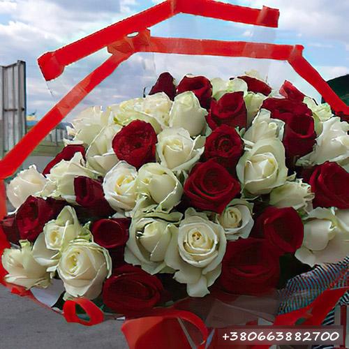 51 красная и белая роза фото букета