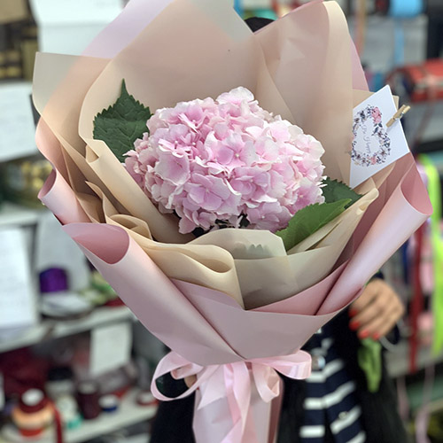 Фото товара Розовая гортензия